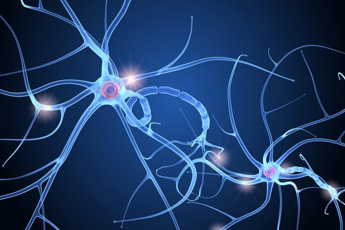 khoa nội thần kinh