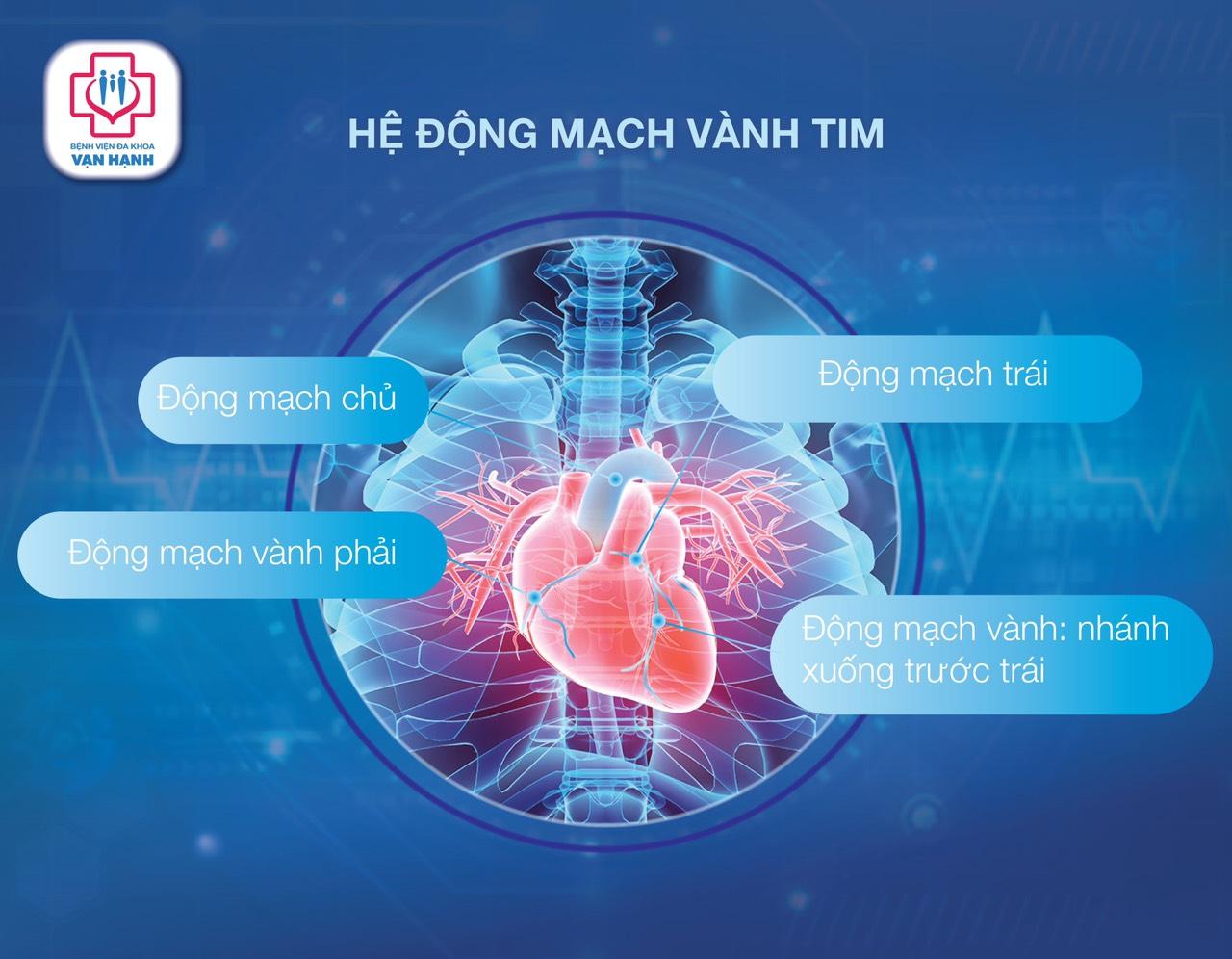 bệnh lý tim mạch ( bệnh mạch vành)